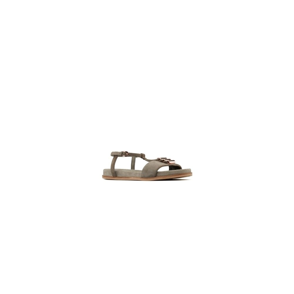 3df780ec0dcafc Clarks Agean Cool Sage Grey Leather Womens Strappy Sandal - Clarks ...